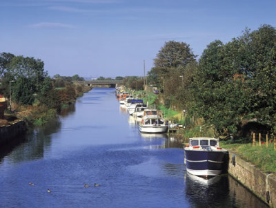 New Ancholme dog walk, Lincolnshire - Driving with Dogs