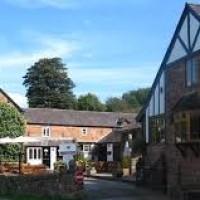 Dog-friendly inn and walks near Tattenhall, Cheshire - dog-friendly-cheshire.jpg