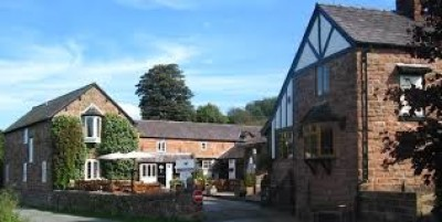 Dog-friendly inn and walks near Tattenhall, Cheshire - Driving with Dogs