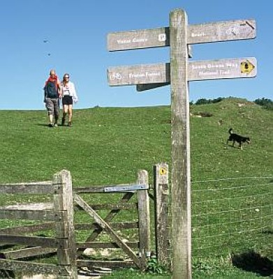 Seven Sisters Country Park dog walks, Sussex - Driving with Dogs