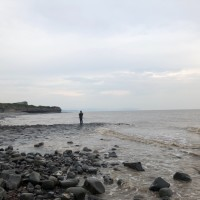 Kilve Beach - dog-friendly, Somerset - 3E647274-F34E-4D7F-9DFB-C9135D833EF0.jpeg