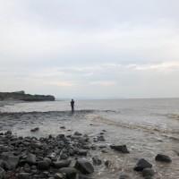 Kilve Beach - dog-friendly, Somerset - 3E647274-F34E-4D7F-9DFB-C9135D833EF0.jpeg