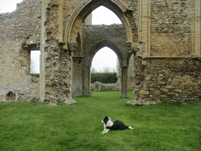 A149 cafe and abbey ruins, Norfolk - Driving with Dogs