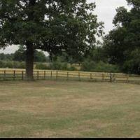 Country park dog walks near Harlow, Hertfordshire - Hertfordshire dog walking places.jpg