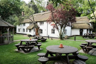 A326 dog-friendly pub and paw stretch near Southampton, Hampshire - Driving with Dogs