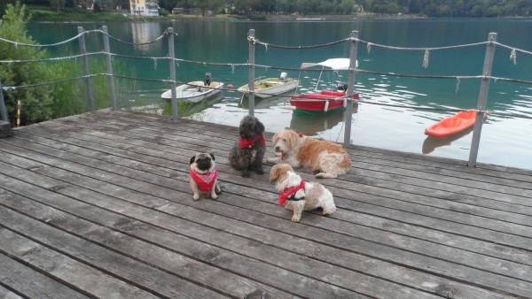 AngeliniFamily 2016 ITALY Lake Garda-  (c ANGELINI POST.com )