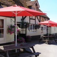 Woodland walk and dog-friendly pub near Romsey, Hampshire - Hampshire dog-friendly pub and dog walk