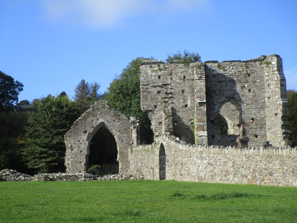 Ruined Abbey and dog-friendly cafe near Cardigan, Wales - IMG_5836.JPG