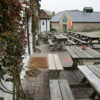 A259 dog walk and dog-friendly pubs, East Sussex - Sussex dog walks and dog-friendly pubs.JPG