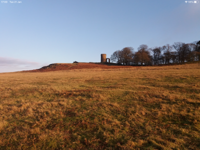 Bradgate Park dog walks, Leicestershire - Driving with Dogs
