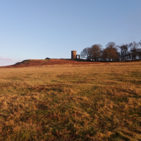 Bradgate Park dog walks, Leicestershire - C115E9DD-C298-4393-9C07-565E89D9B3D9.png
