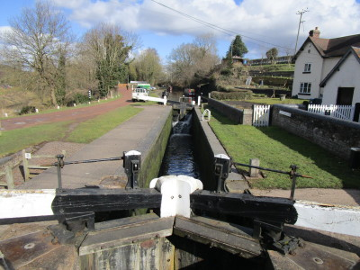Dog-friendly pub and dog walk near Kingswinford, Staffordshire - Driving with Dogs