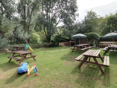 Ouse Valley pub and dog walks, Bedford - Driving with Dogs