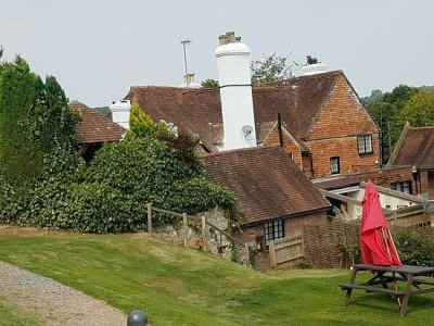 Dog-friendly dining near Crowborough, East Sussex - Driving with Dogs