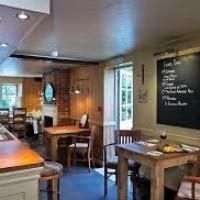 A272 dog-friendly pub and dog walk near Petworth, West Sussex - Sussex dog-friendly pub and dog walks.jpg