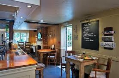 A272 dog-friendly pub and dog walk near Petworth, West Sussex - Driving with Dogs
