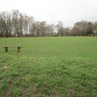 M25 Junction 8 dog walk and dog-friendly pub, Surrey - Surrey dog walks and dog-friendly pubs.JPG