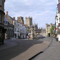 Dog-friendly walks and eating out in Wells, Somerset - Wells with the dog.jpg