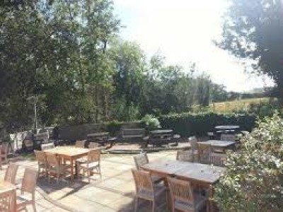 Cock Marling dog-friendly pub, East Sussex - Driving with Dogs