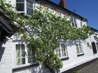 A420 dog-friendly pub and short dog walk, Oxfordshire - Driving with Dogs