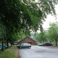 A3 country park walk and dog-friendly pub, Hampshire - Dog walks in Hampshire