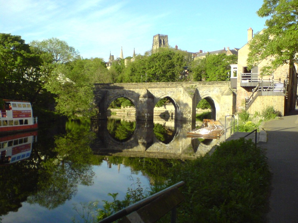 Shincliffe to Durham dog walk and dog-friendly pub, County Durham - Dog walks in Tyne and Wear