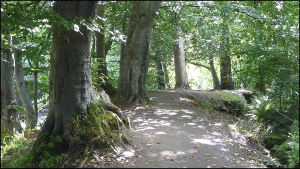 Roe Valley Country Park dog walk, NI - Dog walks in Northern Ireland