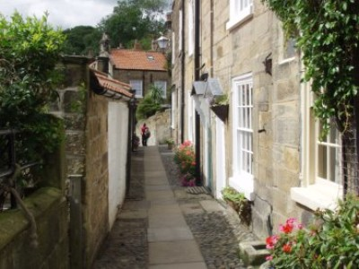 Robin Hood's Bay dog walk, Yorkshire - Driving with Dogs