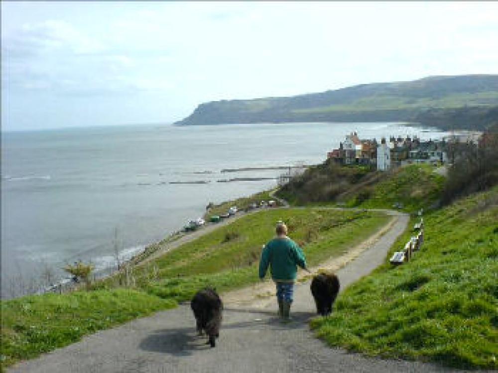 Robin Hood's Bay dog walk, Yorkshire - Dog walks in Yorkshire