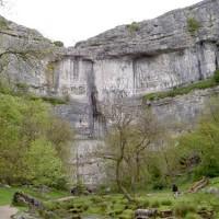 Limestone Walk with the dog at Malham, Yorkshire - Dog walks in Yorkshire