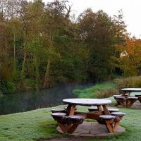 M3 dog-friendly pub and dog walk near Basingstoke, Hampshire - Hampshire dog-friendly pub and dog walk