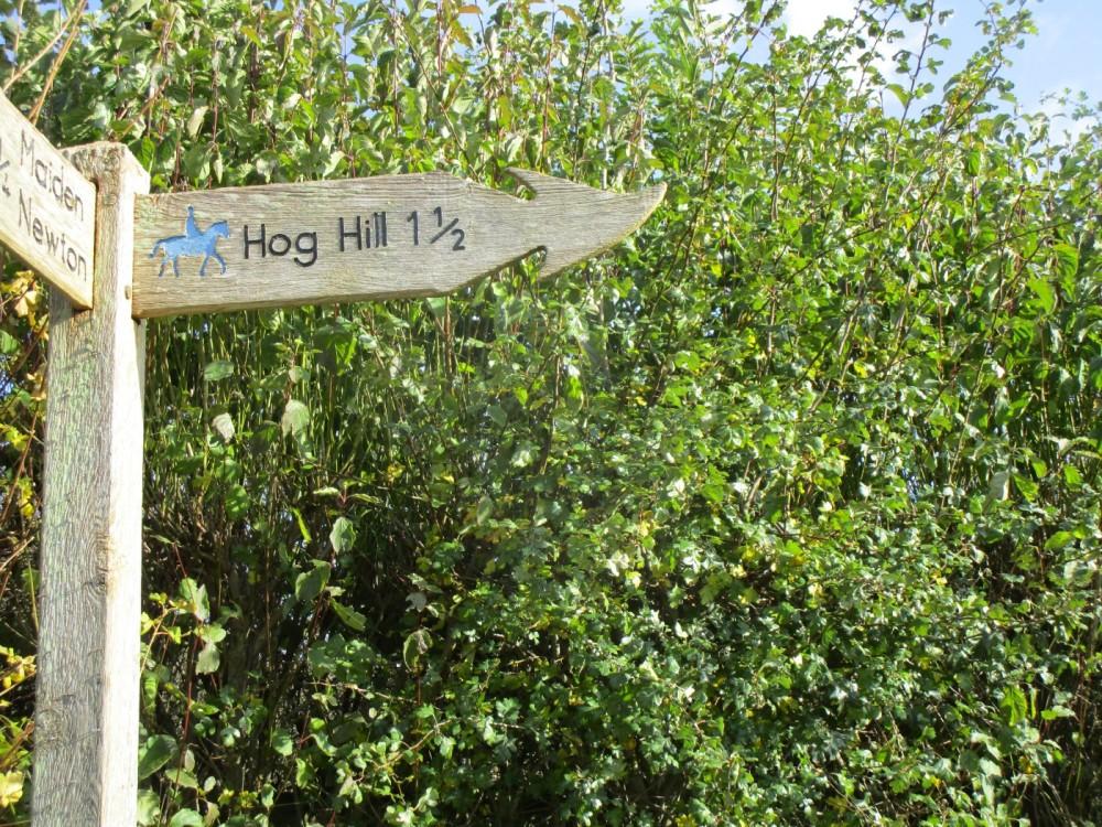 Country dog walk and pub near Dorchester, Dorset - IMG_6320.JPG