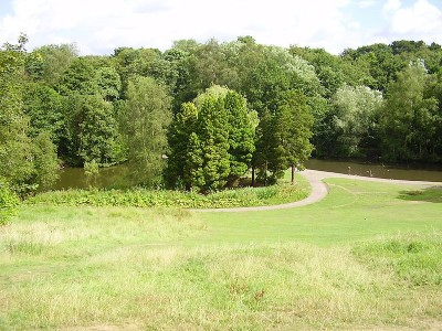 Bramhall dog walks near Stockport, Cheshire - Driving with Dogs