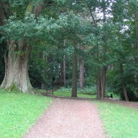 Bramhall dog walks near Stockport, Cheshire - Dog walks in Cheshire
