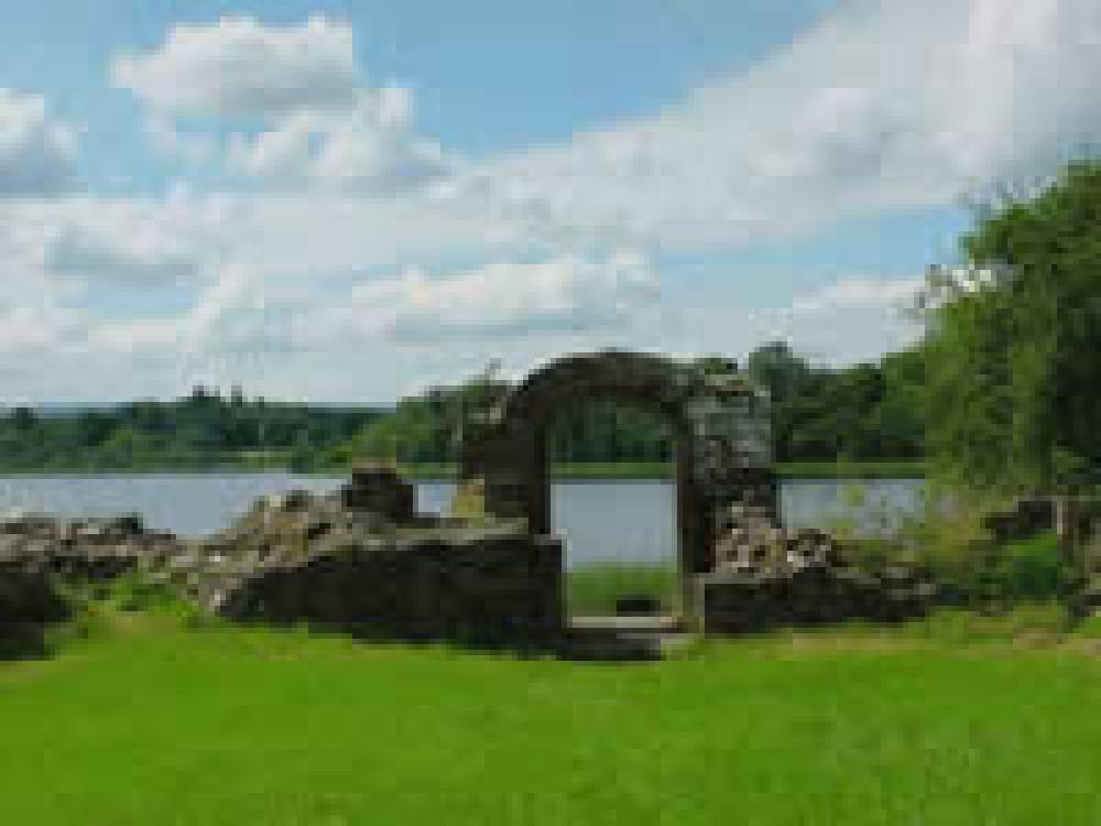 Stately walk near Newtownbutler, NI - Dog walks in Northern Ireland