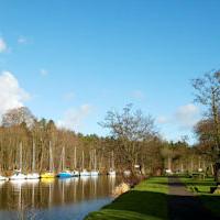 Antrim Waterside Dog Walk, NI - Dog walk in Northern Ireland