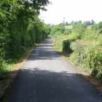 Newry Canal dog walk from Scarva, NI - Dog walks in Northern Ireland