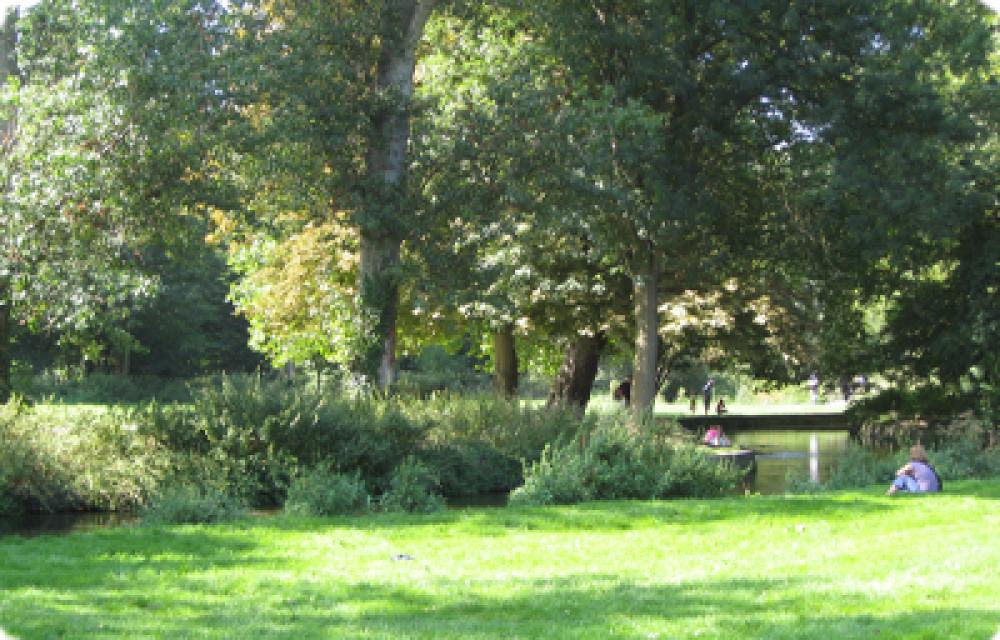 Morden Hall Park dog walks, Surrey - Dog walks in Surrey