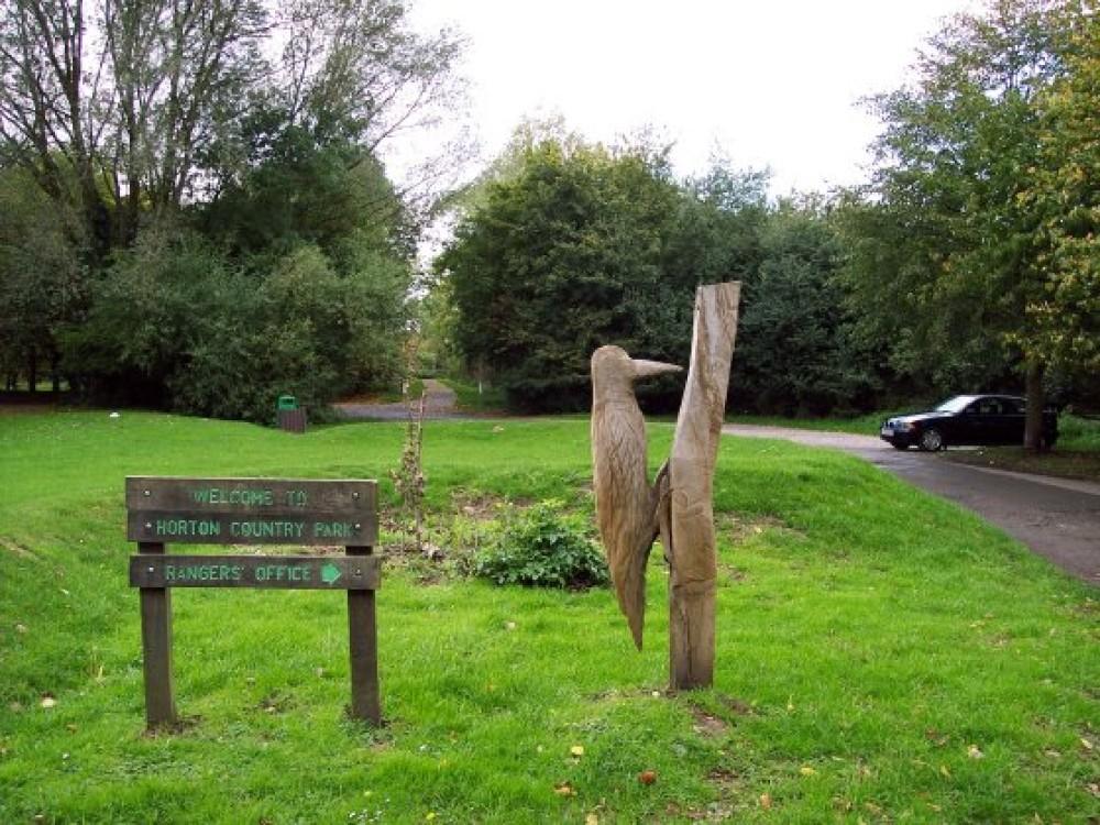Horton Country Park local dog walk, Surrey - Dog walks in Surrey