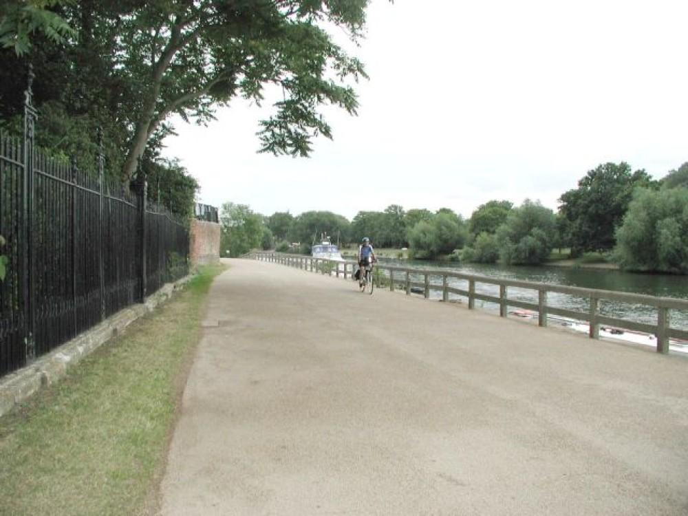 Thames riverside dog walk and dog-friendly pub, Surrey - Dog walks in Surrey