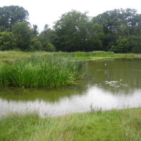 Fryent Country Park, Greater London - Dog walks in Greater London