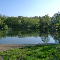 Hampstead Heath - Image 2