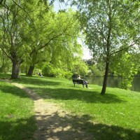 Hampstead Heath - Image 3