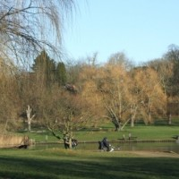 Hampstead Heath - Image 4