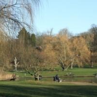 Hampstead Heath - Image 4