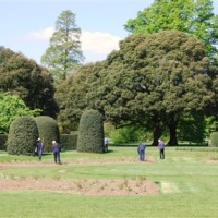 Marble Hill Park, Greater London - Dog walks in Greater London