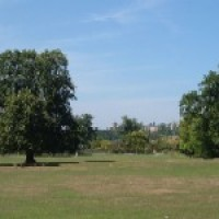 Mill Hill Park, Greater London - Dog walks in Greater London