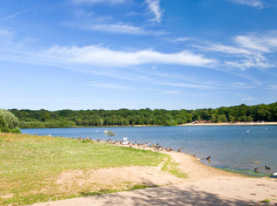 Ruislip Lido, Greater London - Driving with Dogs