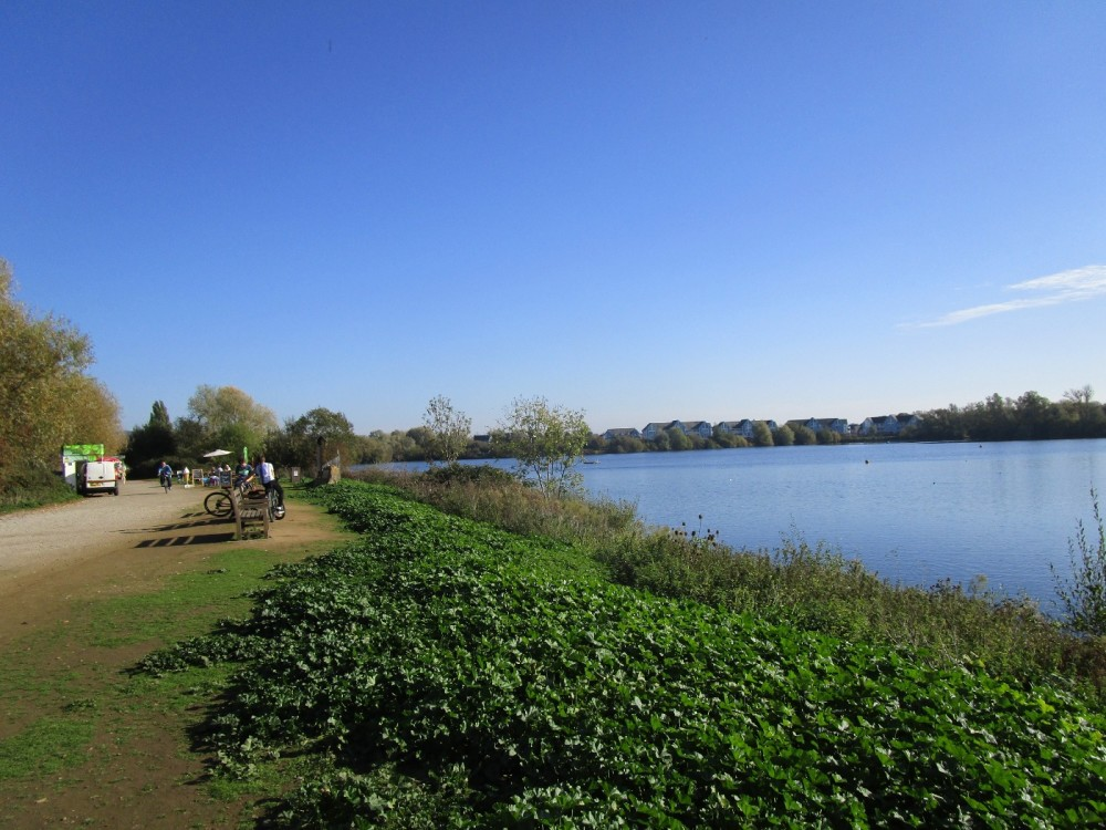 Lakeside dog walk near the M20, Kent - Kent dog-friendly pubs with dog walks