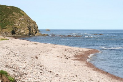 Aberdour dog-friendly beach, Scotland - Driving with Dogs